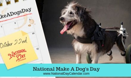 NATIONAL MAKE A DOG'S DAY