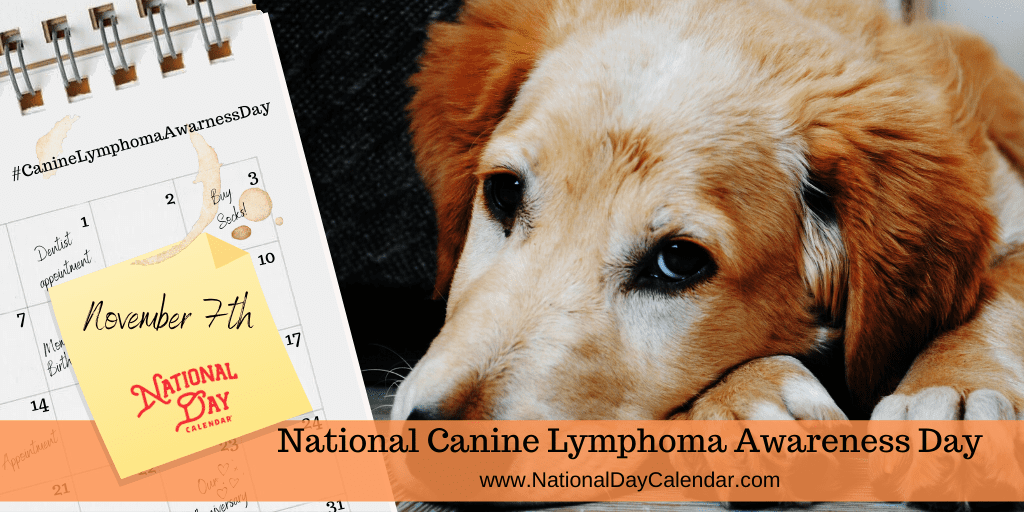 NATIONAL CANINE LYMPHOMA AWARENESS DAY